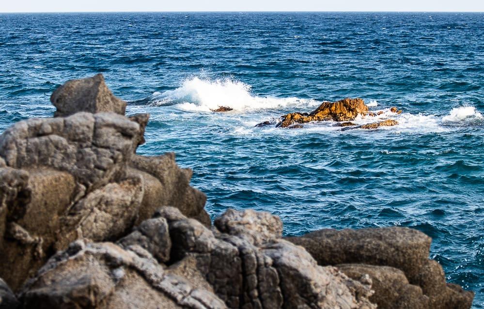 Mala mar – Platja D'aro  13-8-2020